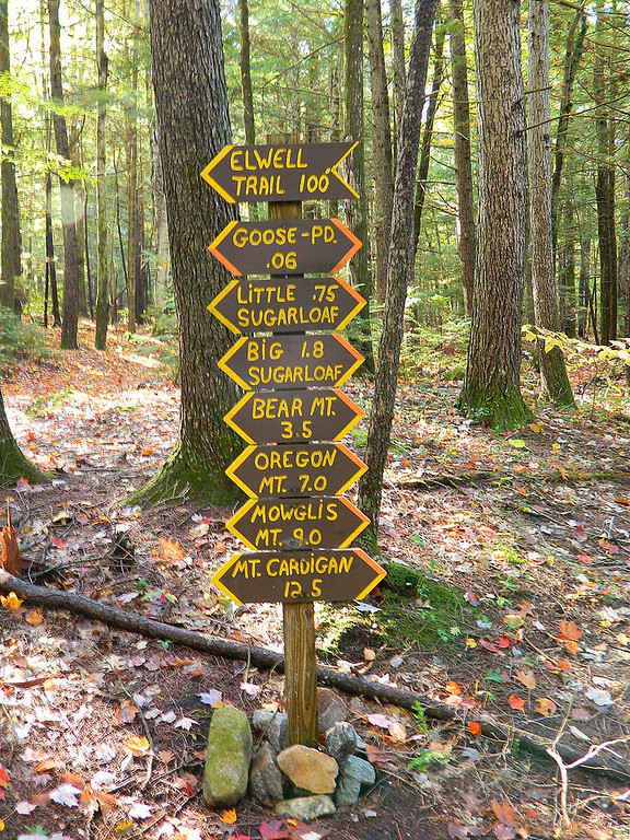 Lots of options on where to hike.