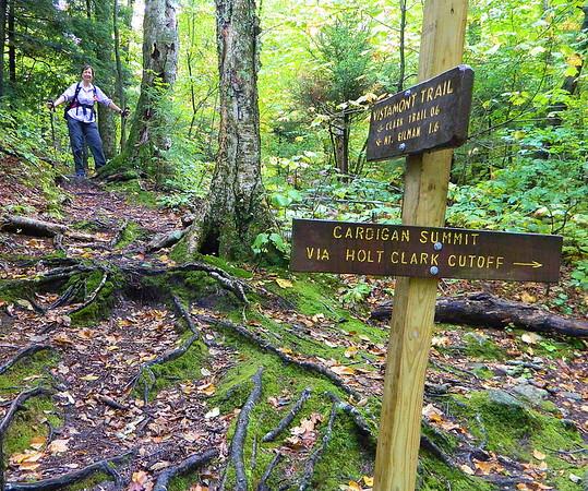 We took the Vistamount Trail to Mount Orange