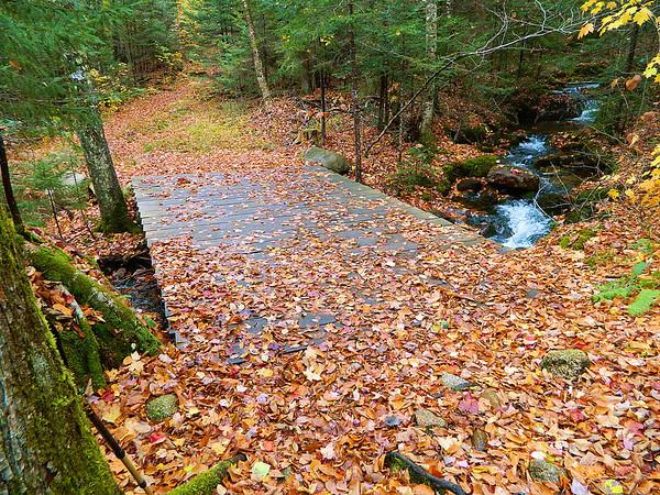 Bridge over East Pond Brook