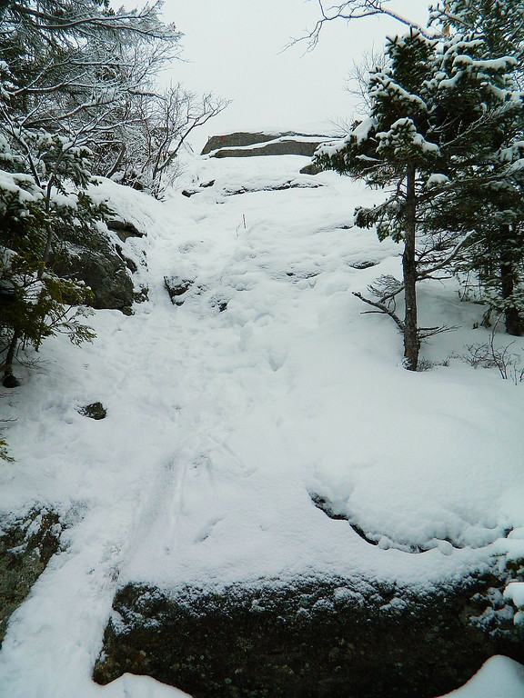 The trail goes up this steep section